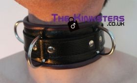 Black & Purple Padded Leather Collar